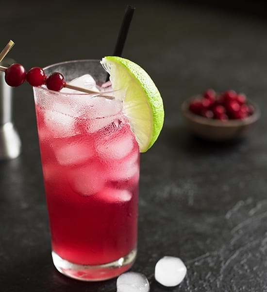 Bartender for summer party with great drinks