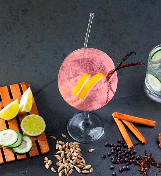 Variationer af Gin and Tonic